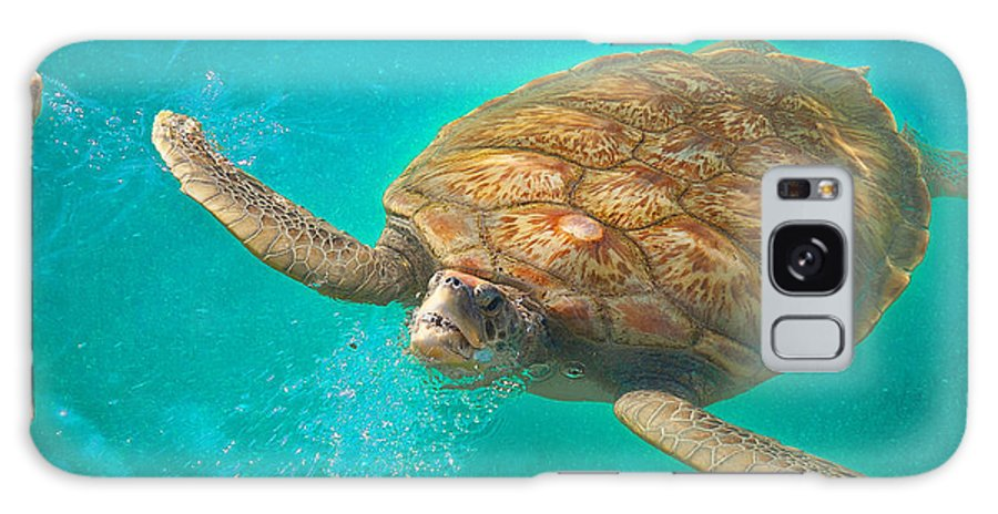 Sea Turtle Galaxy S8 Case featuring the photograph Green Sea Turtle Surfacing by Marie Hicks
