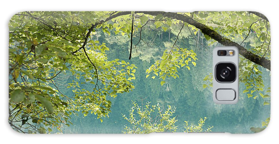 Lake Galaxy S8 Case featuring the photograph Green Trees Over Blue Water by Nelson Peng