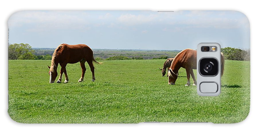 Pastures Galaxy S8 Case featuring the photograph Greener Pastures by Hilton Barlow