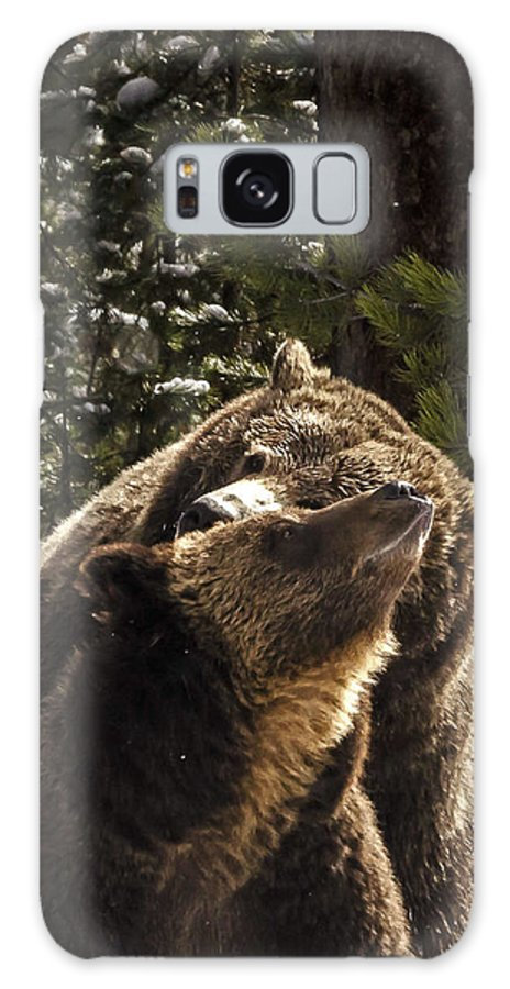 Grizzly Bear Photographs Galaxy S8 Case featuring the photograph Grizzly Love by Bruce J Barker