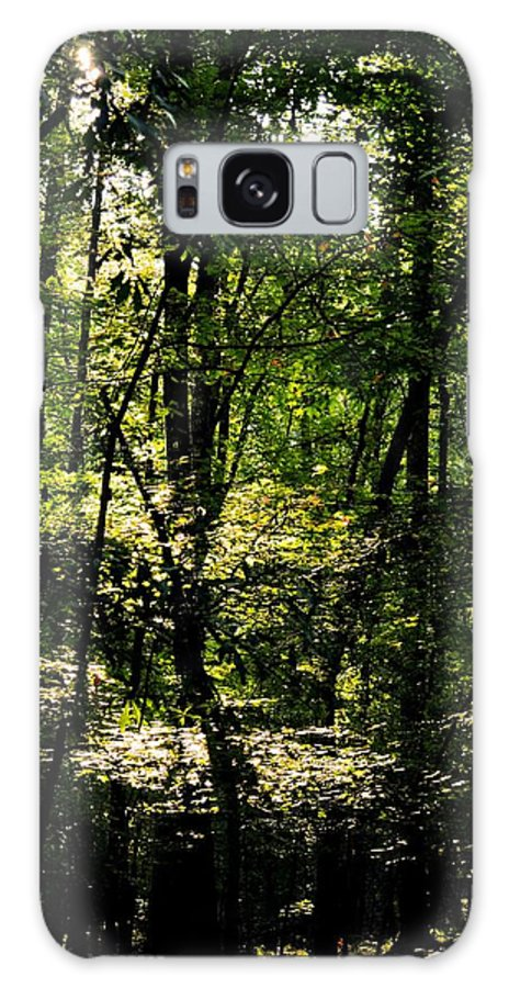 Guardians Of The Forest Galaxy S8 Case featuring the photograph Guardians Of The Forest by Maria Urso