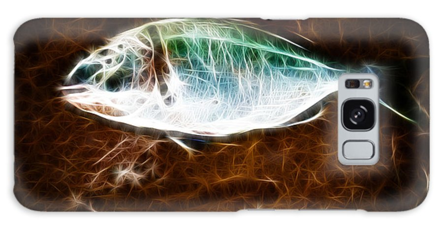 Bream Galaxy S8 Case featuring the photograph Guilthead Bream. by Dave Wilkinson
