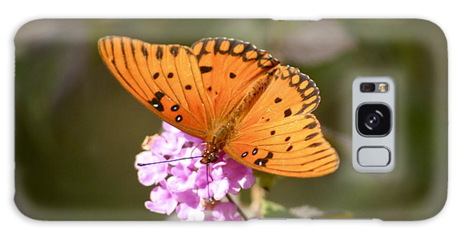 Flower Galaxy S8 Case featuring the photograph Gulf Fritillary Butterfly by Robert Camp