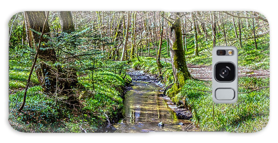 Helford; River Helford; Ponsontuel Creek; Gweek Village; Gweek Woods; Gweek Drive; Mawgan; Cornwall; Green; Blue; Brown.nature; Water Galaxy S8 Case featuring the photograph Gweek Woods by Brian Roscorla