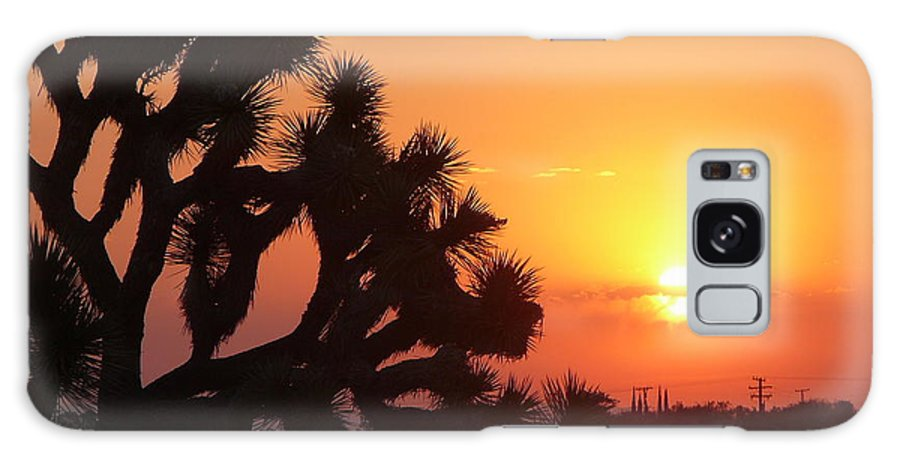 Yucca Valley Galaxy S8 Case featuring the photograph Hacienda Del Sol by Mary Brhel
