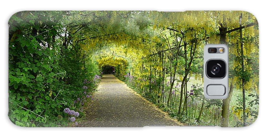 Surrey Galaxy S8 Case featuring the photograph Hampton Court Palace Flower Tunnel by Deborah Smolinske