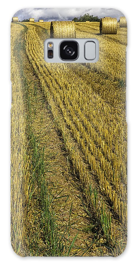 Harvest Galaxy S8 Case featuring the photograph Harvest Time by Fran Gallogly