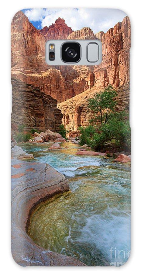 America Galaxy S8 Case featuring the photograph Havasu Creek by Inge Johnsson