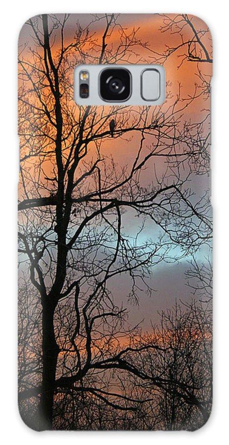Sunrise Galaxy S8 Case featuring the photograph Hawk At Dawn by Karen Adams