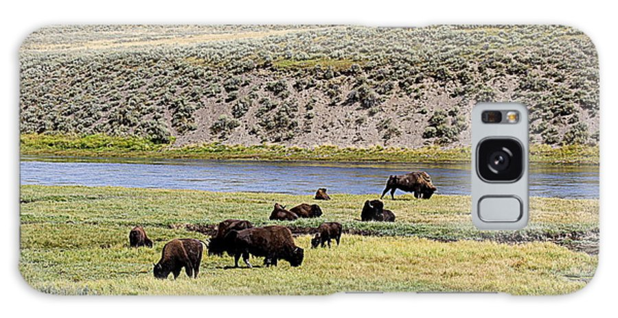 Bison Galaxy S8 Case featuring the photograph Hayden Valley Bison Herd In Yellowstone National Park by Catherine Sherman