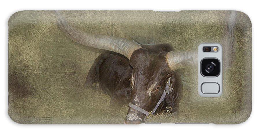 Bull Galaxy S8 Case featuring the photograph Heavy Horns by Judy Hall-Folde