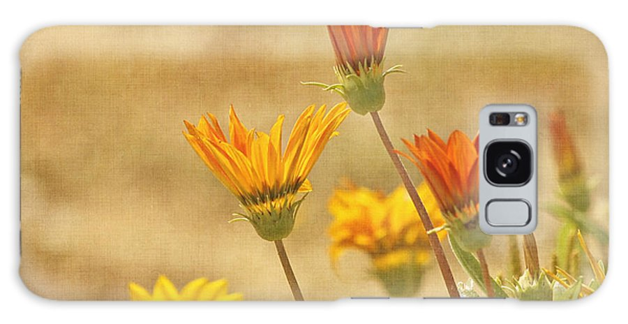 Yellow Flower Galaxy S8 Case featuring the photograph Here Comes The Sun by Kim Hojnacki