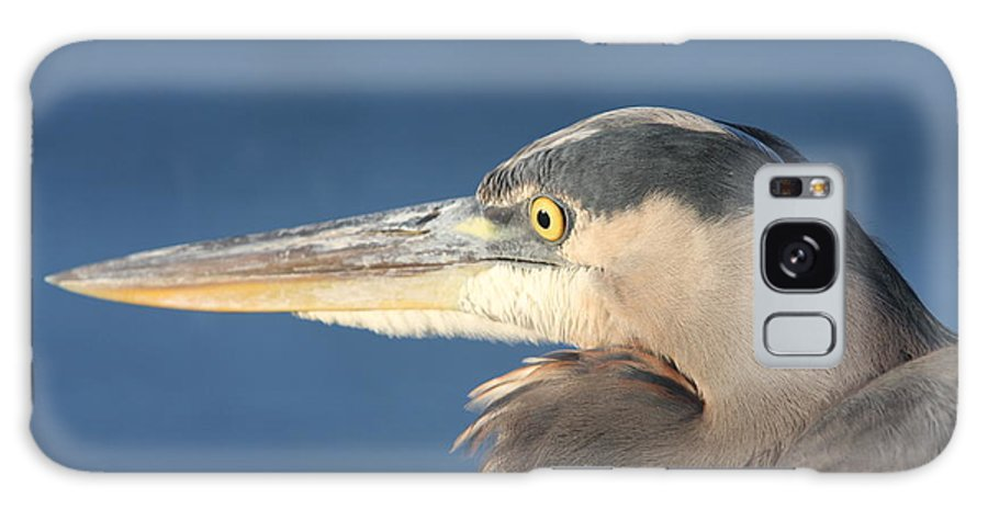 Heron Galaxy S8 Case featuring the photograph Heron Close-up by Christiane Schulze Art And Photography