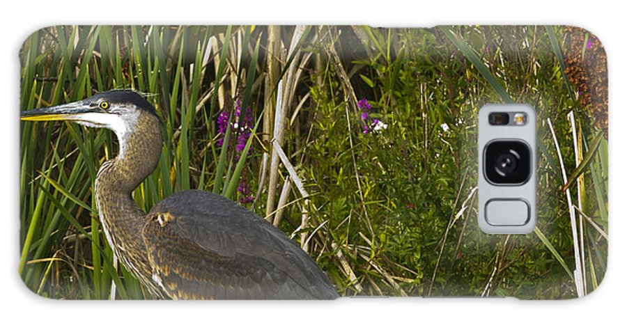 Stork Galaxy S8 Case featuring the photograph Heron by Rob Mclean