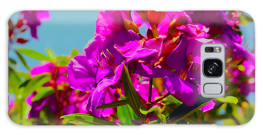 Flower Galaxy S8 Case featuring the photograph Hervey Bay Flowers by Cassandra Buckley