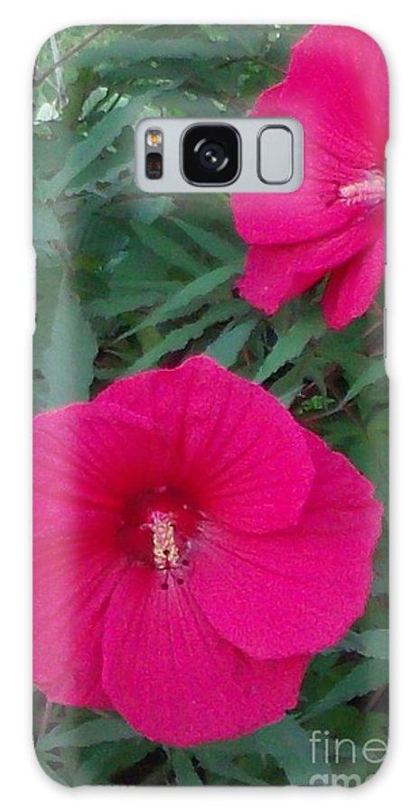 Hawaii Galaxy S8 Case featuring the photograph Hibiscus Flower Times Two by Gail Matthews