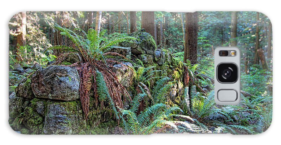 Beautiful Galaxy S8 Case featuring the photograph Hidden Rock Wall by James Wheeler