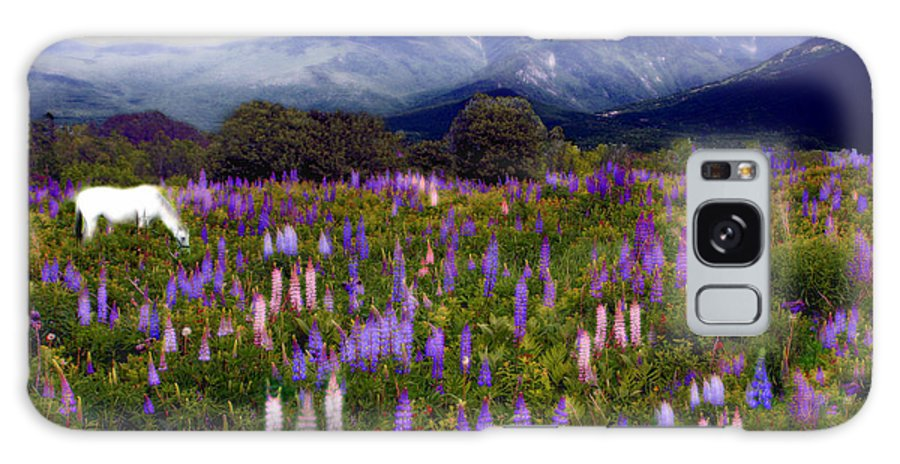 Lupinefest Galaxy S8 Case featuring the photograph High Country Lupine Dreams by Wayne King