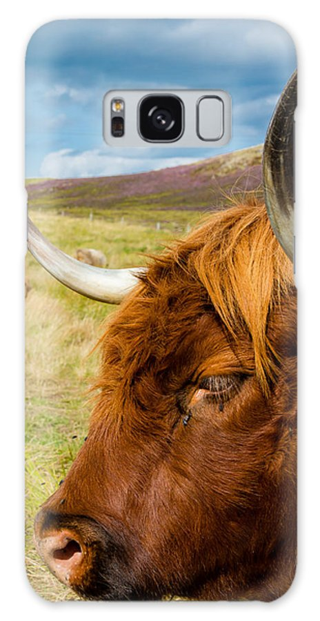 Cow Galaxy S8 Case featuring the photograph Highland Cattle On Scottish Pasture by Andreas Berthold