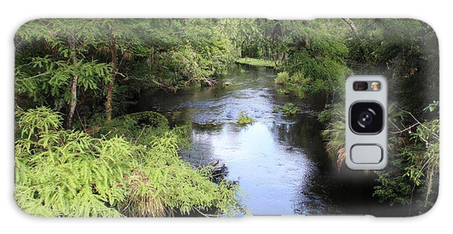 Hillsborough River. River Galaxy S8 Case featuring the photograph Hillsborough River by Alicia Roman