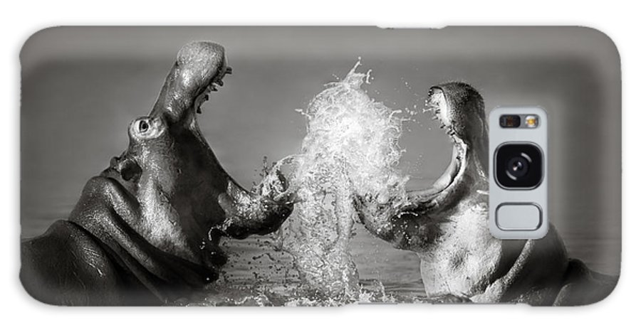 Hippo Galaxy Case featuring the photograph Hippo's fighting by Johan Swanepoel