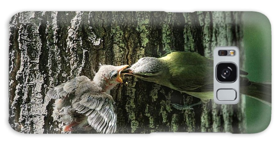 Vireo Galaxy S8 Case featuring the photograph History In The Making? by Donna Kennedy