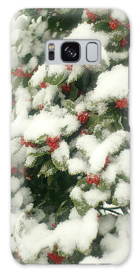 Holly Tree Galaxy S8 Case featuring the photograph Holly Tree With Snow by Suzanne Powers