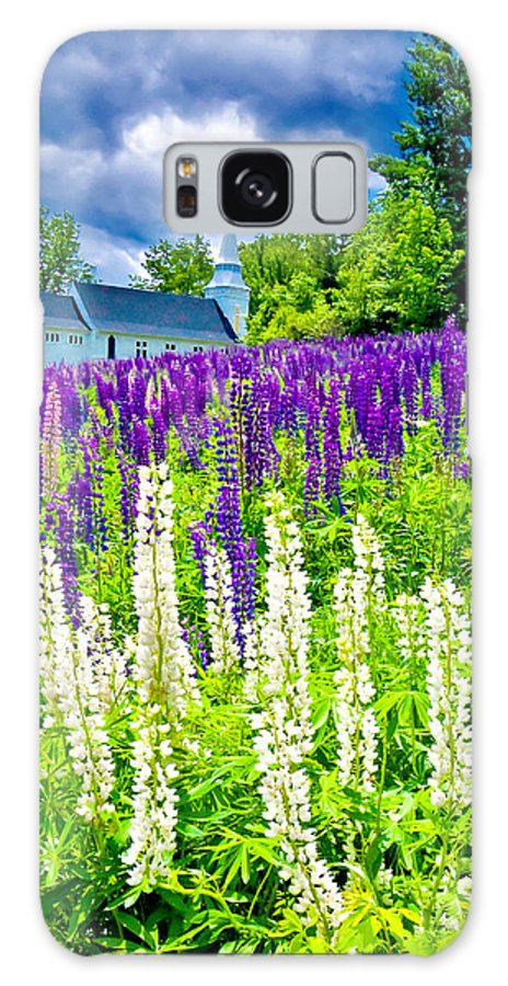Crawford Notch Galaxy S8 Case featuring the photograph Holy Lupines by Greg Fortier