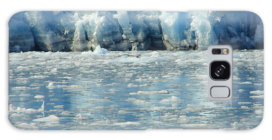 Alaska Galaxy S8 Case featuring the photograph Home On The Cold by Lew Davis