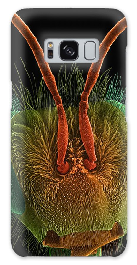 9241b Galaxy S8 Case featuring the photograph Honey Bee Head by Dennis Kunkel Microscopy/science Photo Library
