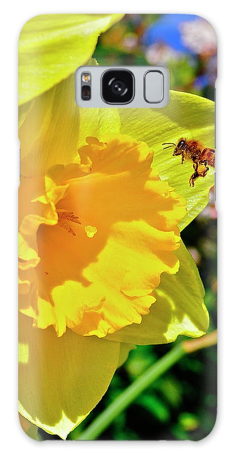Honey Bee Galaxy S8 Case featuring the photograph Honey Bee by Mark Lemon