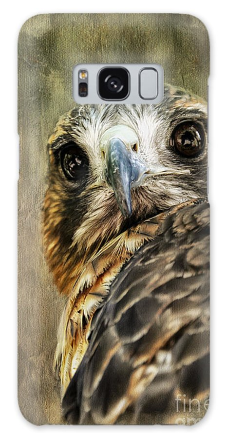 Hawk Galaxy S8 Case featuring the photograph Honing In by Lois Bryan