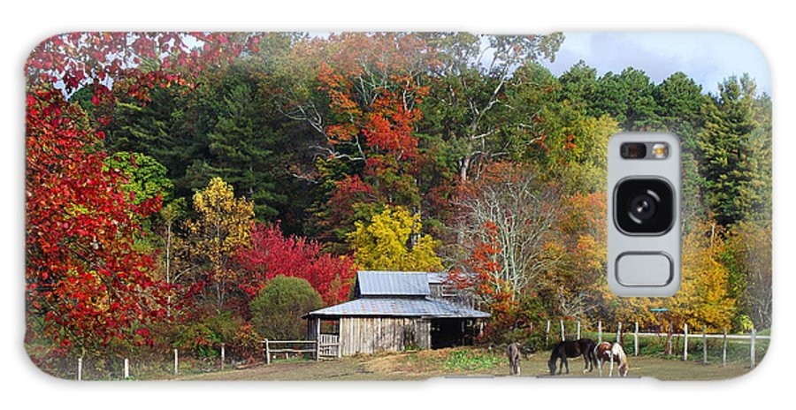 Duane Mccullough Galaxy S8 Case featuring the photograph Horse And Barn In The Fall 3 by Duane McCullough
