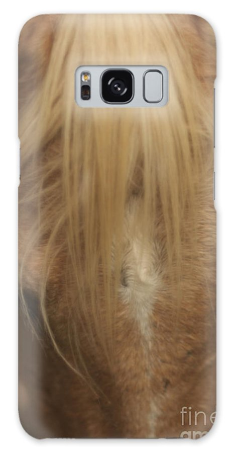 Horse Galaxy S8 Case featuring the photograph Horse Hair by Tony Reilly
