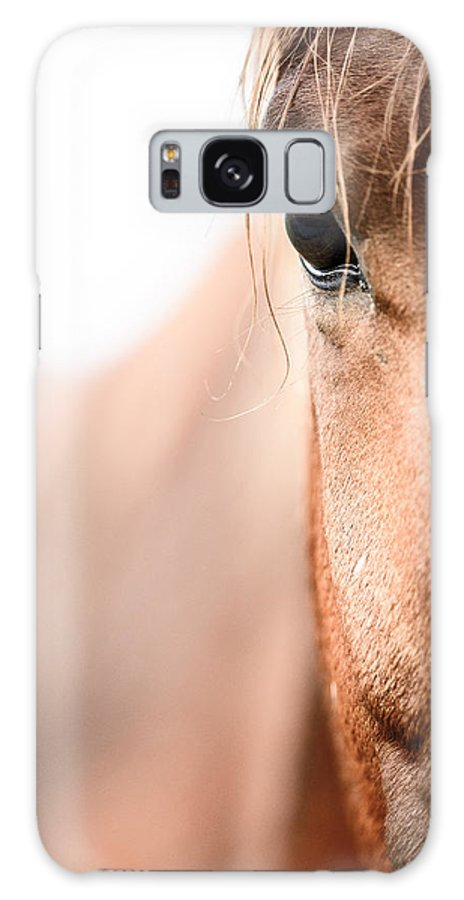 Highkey Galaxy S8 Case featuring the photograph Horses Eye No. 2 by Andy-Kim Moeller