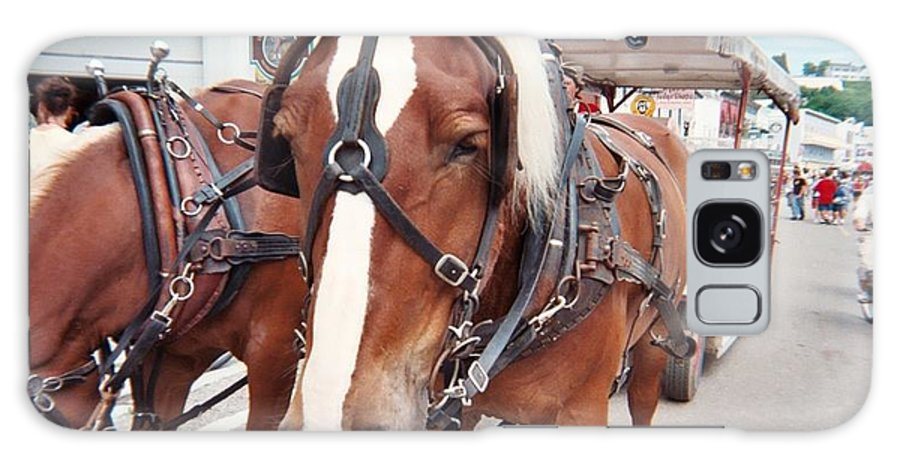 Horses Galaxy S8 Case featuring the photograph Horses by Jo Dawkins