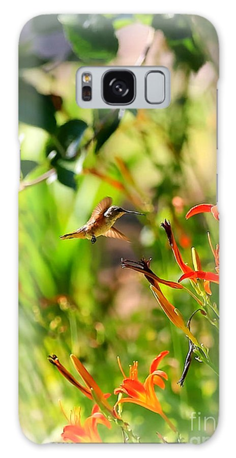 Hummingbird Galaxy S8 Case featuring the photograph Hummingbird In The Daylilies by Carol Groenen