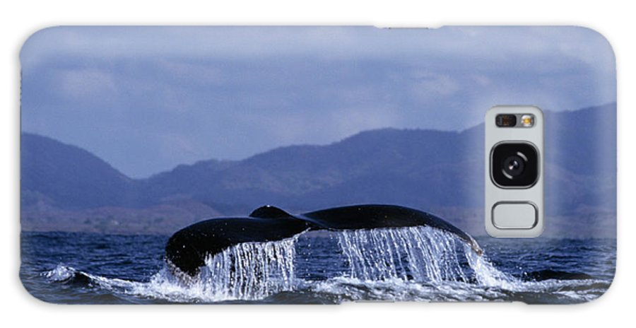 Nature Galaxy S8 Case featuring the photograph Hump Backed Whale Tail With Cascading Water by John Harmon