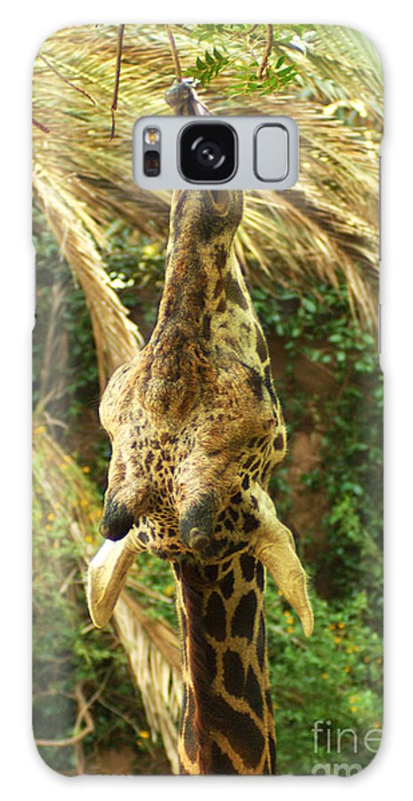 Hungry Galaxy S8 Case featuring the photograph Hungry Giraffe by Micah May