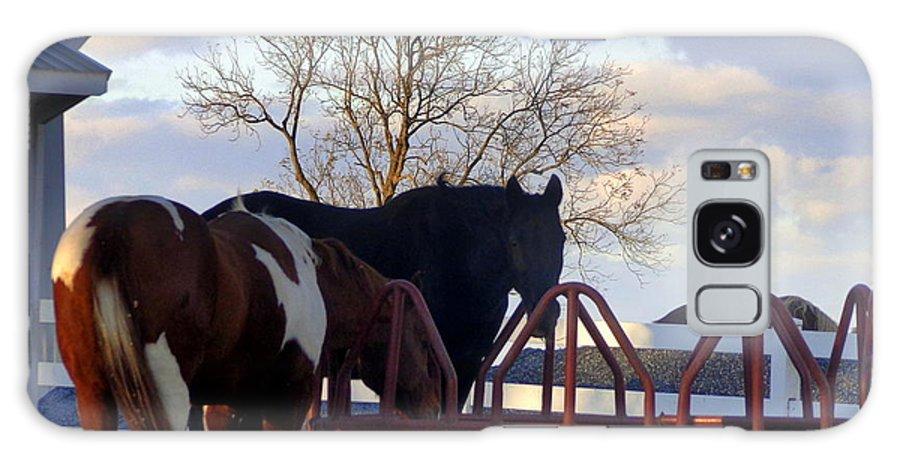 Joseph Skompski Galaxy S8 Case featuring the photograph Hungry Horses by Joseph Skompski