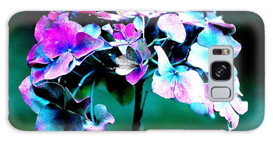 Hydrangea Galaxy S8 Case featuring the photograph Hydrangea by C Lythgo