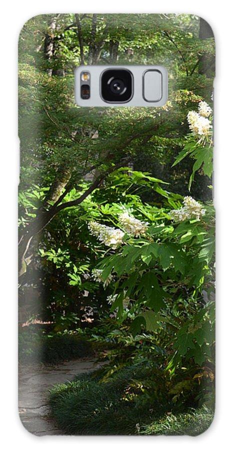 Hydrangea Path Galaxy S8 Case featuring the photograph Hydrangea Path by Maria Urso