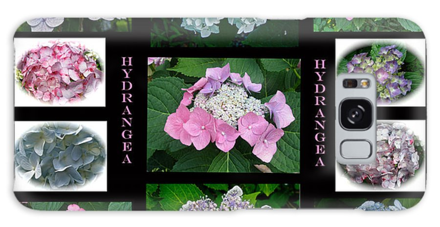 Hydrangea Galaxy S8 Case featuring the photograph Hydrangeas On Parade by Mother Nature