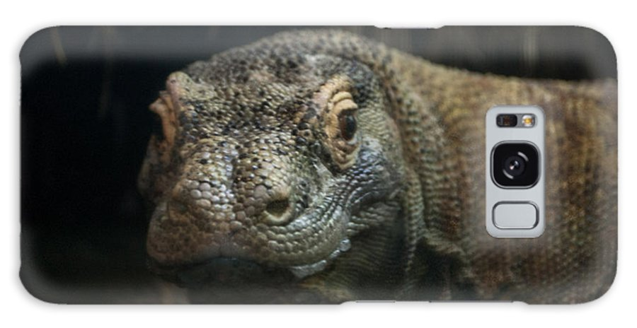 Lizard Galaxy S8 Case featuring the photograph I Am Ready For My Close-up by Rich Priest