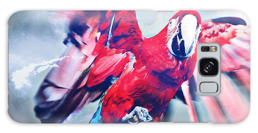 Parrot Galaxy S8 Case featuring the photograph I Don't Want Your Damn Cracker by Kyle Walker