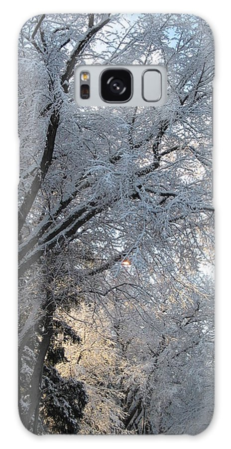 Ice Storm Galaxy S8 Case featuring the photograph Ice On The 6th by Jacqueline Russell