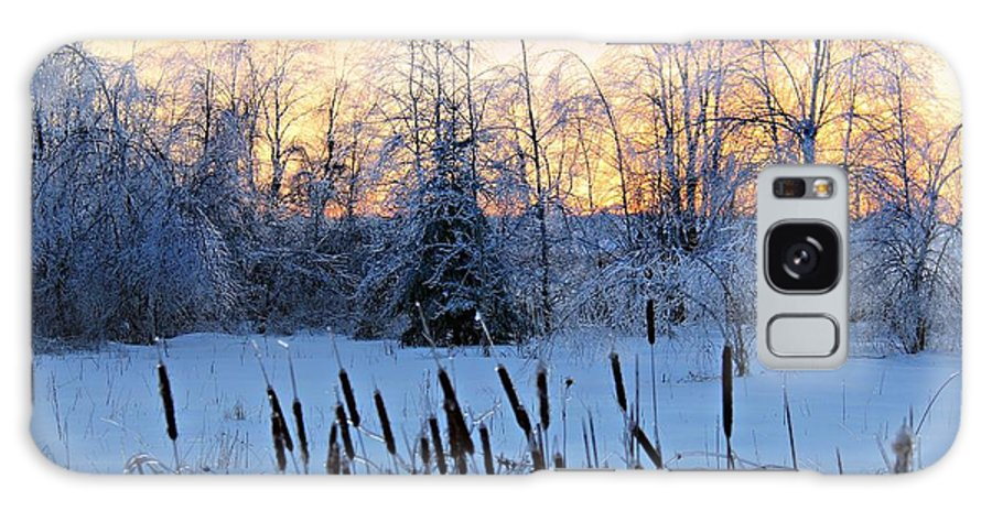 Ice Galaxy S8 Case featuring the photograph Ice Storm 2013/2 by Michaela Preston