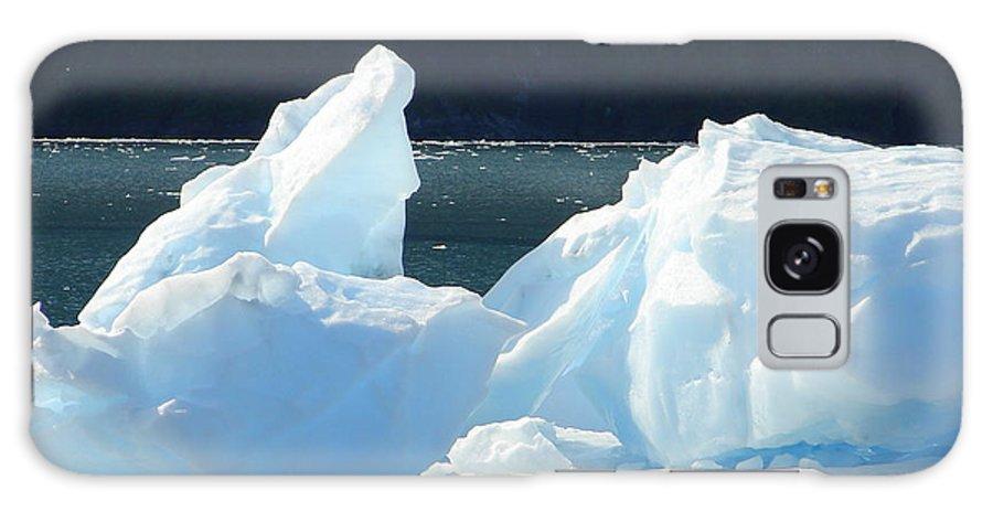 Iceberg Galaxy S8 Case featuring the photograph Iceberg by Lew Davis
