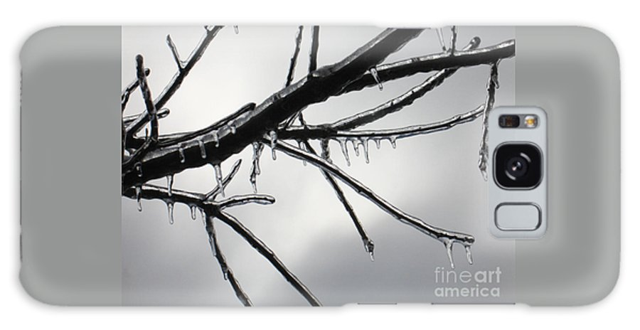 Winter Galaxy Case featuring the photograph Iced Tree by Ann Horn