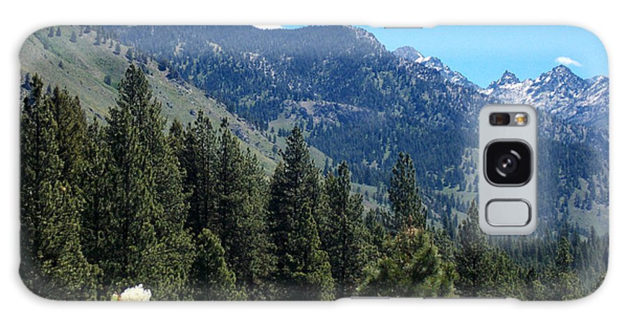 Trees Galaxy S8 Case featuring the photograph Idaho Mountain Side by Susan Kinney
